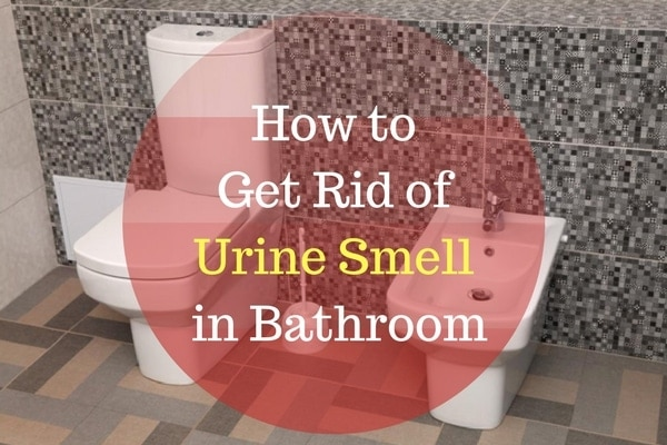 how to get rid of urine smell in bathroom xion lab. Black Bedroom Furniture Sets. Home Design Ideas